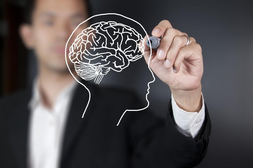 Notas para una aproximación al mensaje de las neurociencias en educación: una conversación con Francisco Rubia